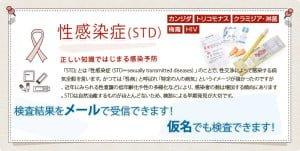 second_main_std_1